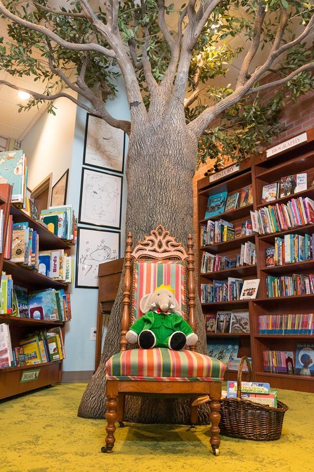 Quail Corners Halloween Contest 2020 Raleigh Nc Under the Tree Storytime   Saturday Mornings   Quail Ridge Books